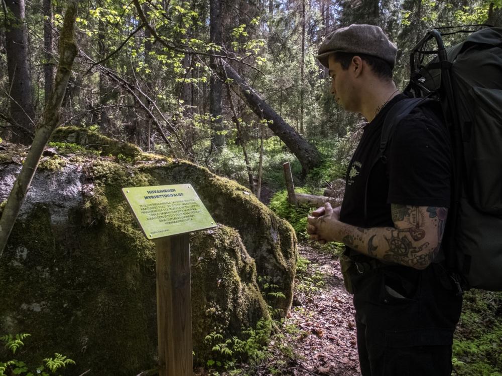 Information about fallen trees around us